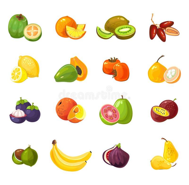 Reeks kleurrijke die beeldverhaalvruchten op witte achtergrond wordt geïsoleerd Tropische vectorvruchten illustratie royalty-vrije illustratie