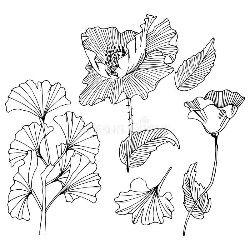 Reeks krabbel bloemenelementen royalty-vrije illustratie