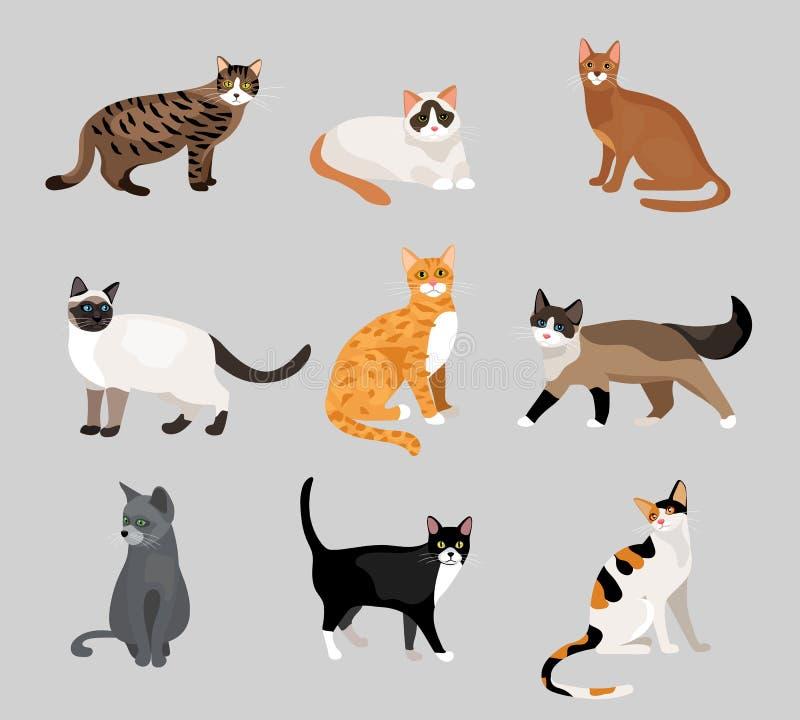 Reeks leuke beeldverhaalpotten of katten stock illustratie