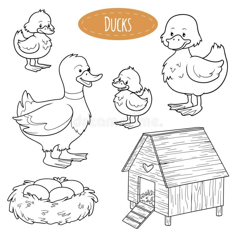 Reeks leuke landbouwbedrijfdieren en voorwerpen, vectorfamilieeenden stock illustratie