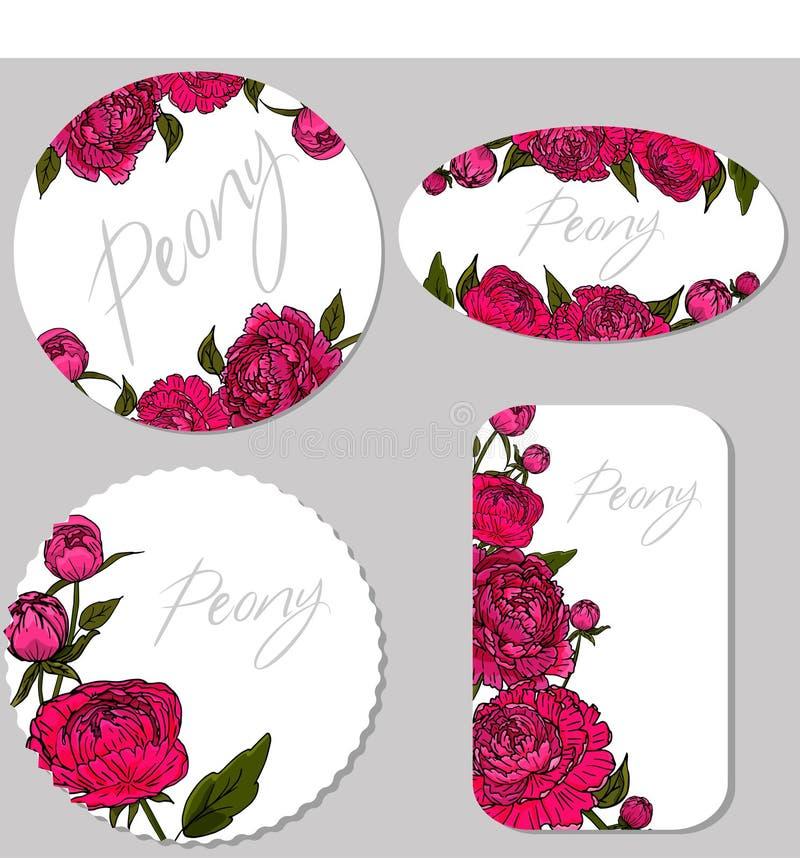 Reeks met bloemen en knoppen van pioen op een witte achtergrond stock afbeelding