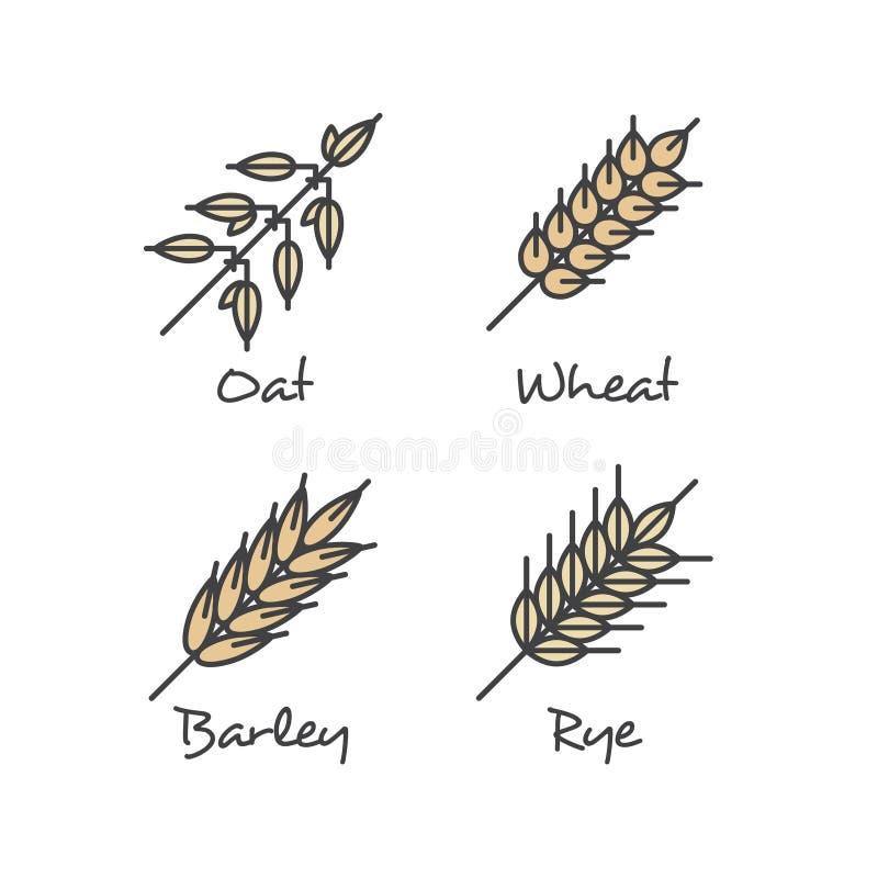 Reeks met de Eenvoudige Pictogrammen van Havermoutpapgraangewassen: Haverzaden, Rogge, Tarwe en Gerst Gezond Ontbijt Vectorconcep stock illustratie