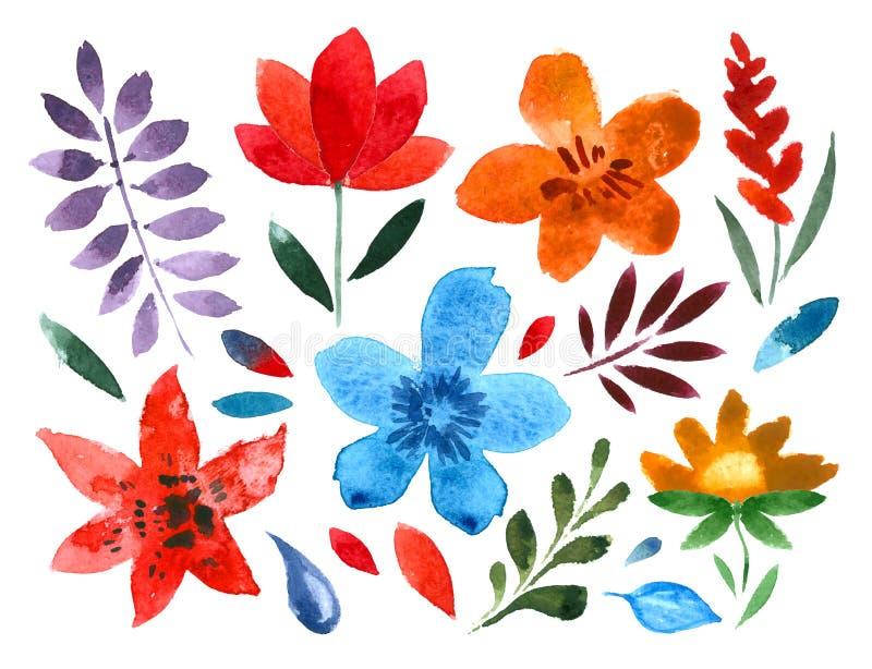 Reeks met de hand geschilderde waterverf vectorbloemen royalty-vrije illustratie