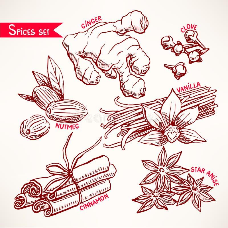 Reeks met kruiden stock illustratie
