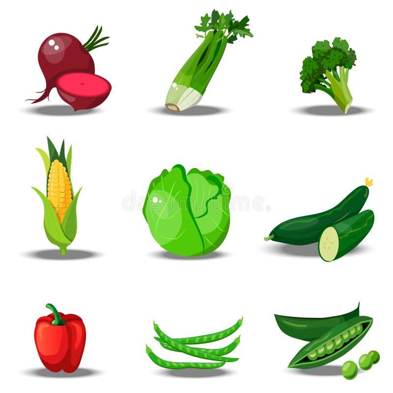 Reeks met verse healty groenten vector illustratie