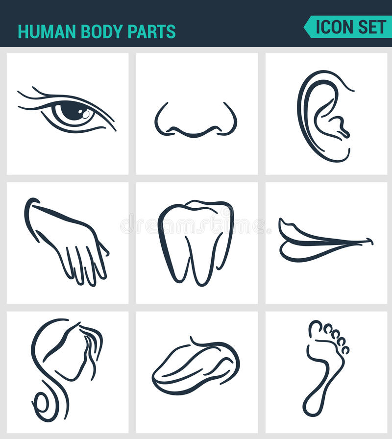 Reeks moderne pictogrammen De menselijke neus van lichaamsdelenogen, oor, hand, tanden, mond, hoofd, tong, voet Zwarte tekens vector illustratie