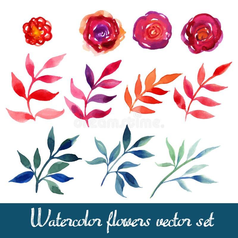 Reeks mooie waterverfbloemen vector illustratie