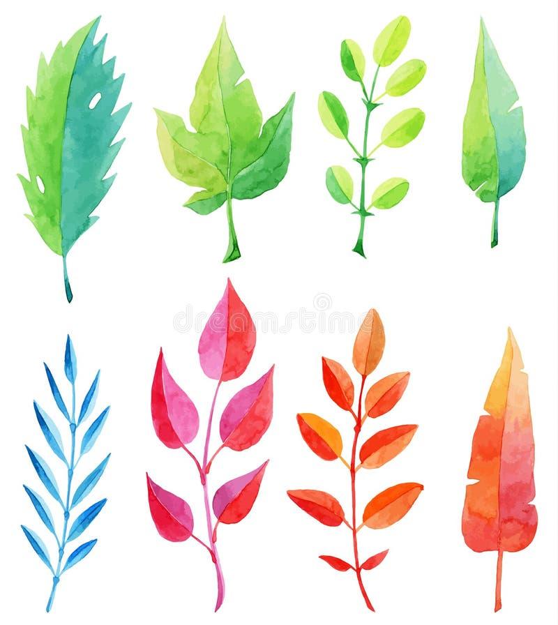 Reeks multicolored waterverfbladeren vector illustratie