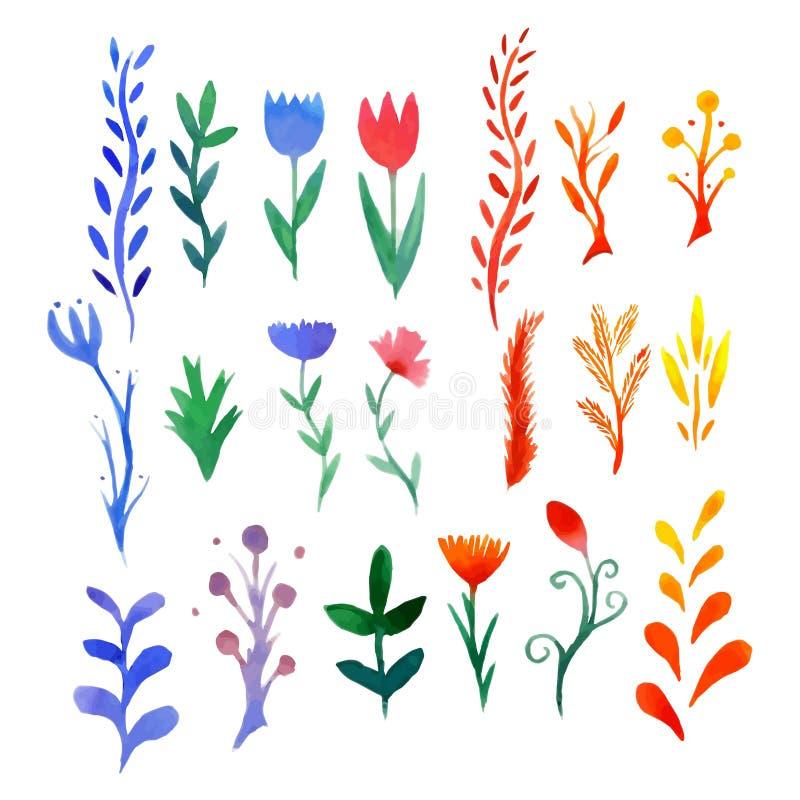 Reeks multicolored waterverfbloemen