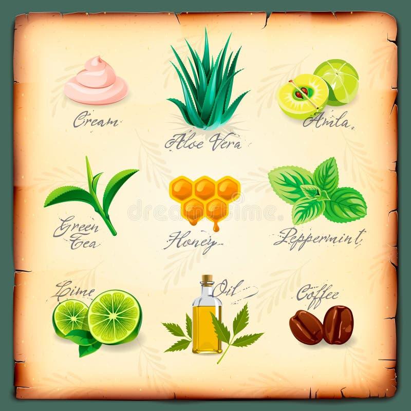 Reeks natuurlijke schoonheidsmiddeleningrediënten stock illustratie