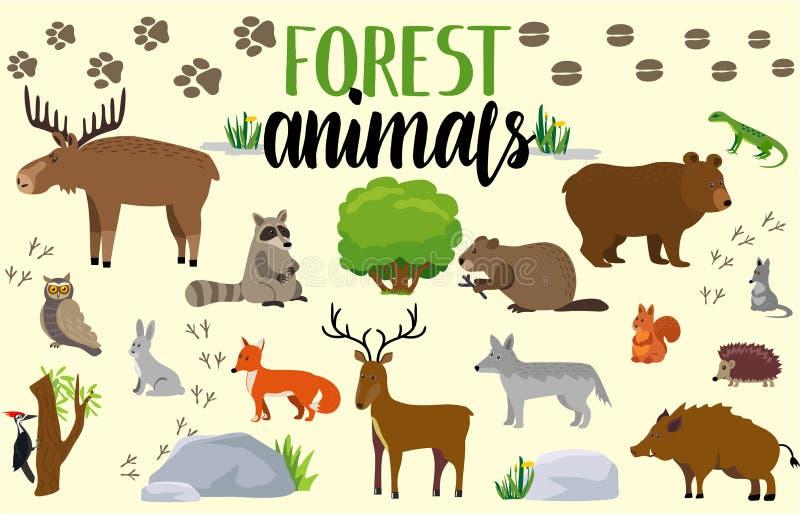 reeks negen vectorschetsen Bos leuke dierlijke vastgestelde tekenings vectorillustratie royalty-vrije illustratie