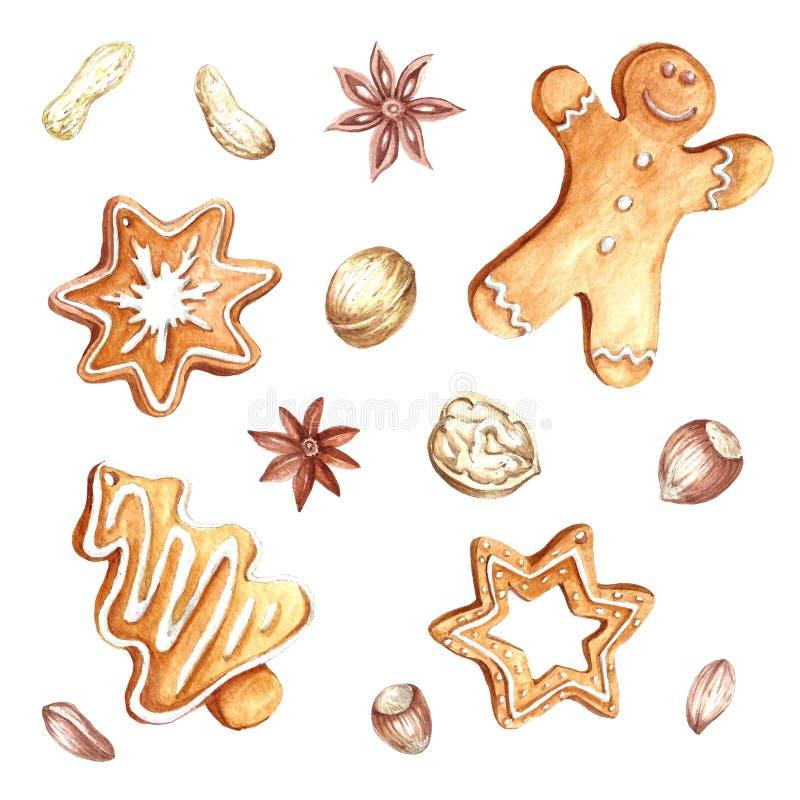 Reeks peperkoek en noten Kerstmis De hand trekt waterverfillustratie stock illustratie