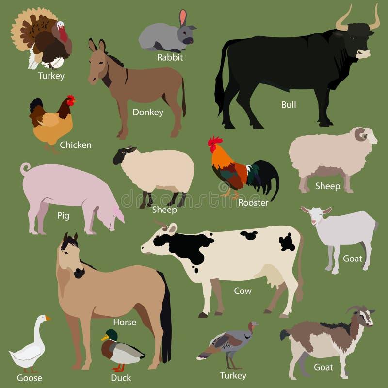 Reeks pictogrammen van landbouwbedrijfdieren Vlak stijlontwerp royalty-vrije illustratie