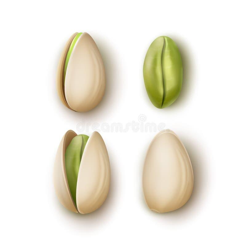 Reeks pistachenoten vector illustratie