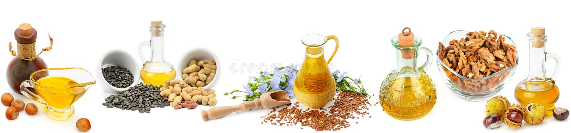 Reeks plantaardige oliën, noten en zaden op witte backgrou worden geïsoleerd die royalty-vrije stock fotografie