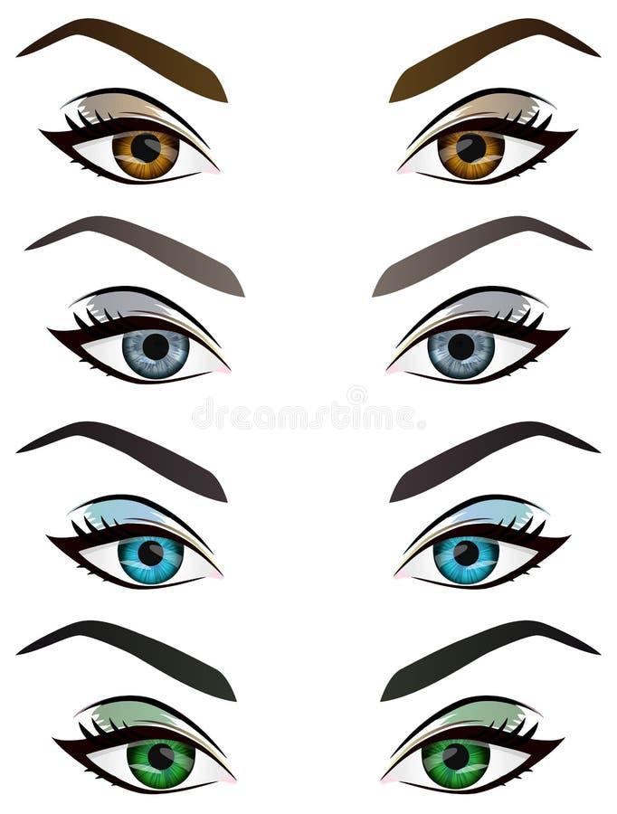 Reeks realistische beeldverhaal vector vrouwelijke ogen en wenkbrauwen stock illustratie