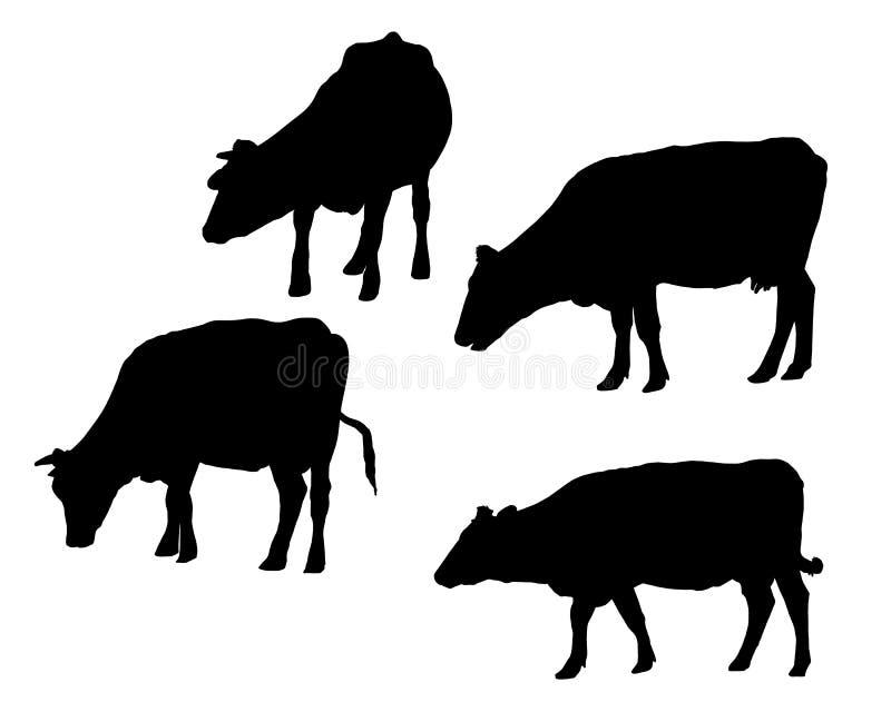 Reeks realistische die silhouetten van koe, op witte backgroun wordt geïsoleerd royalty-vrije illustratie