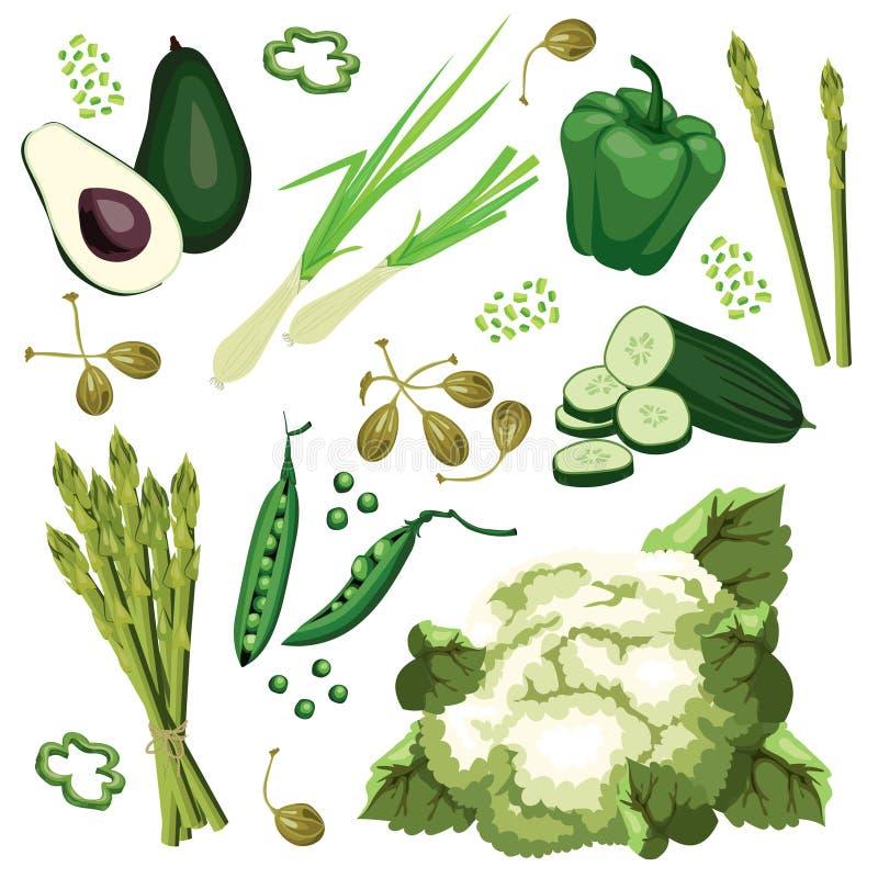 Reeks rijpe groene groenten Avocado, komkommer, groene ui royalty-vrije illustratie