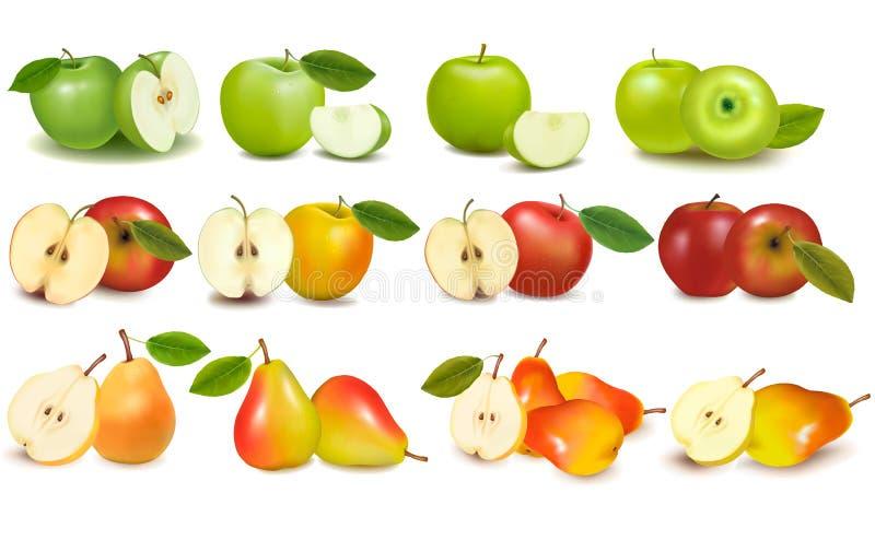 Reeks rode en groene appelvruchten en peren vector illustratie