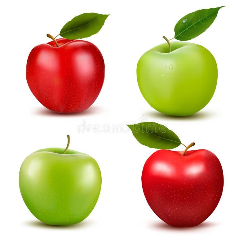 Reeks rode en groene appelvruchten met besnoeiing en gre royalty-vrije illustratie