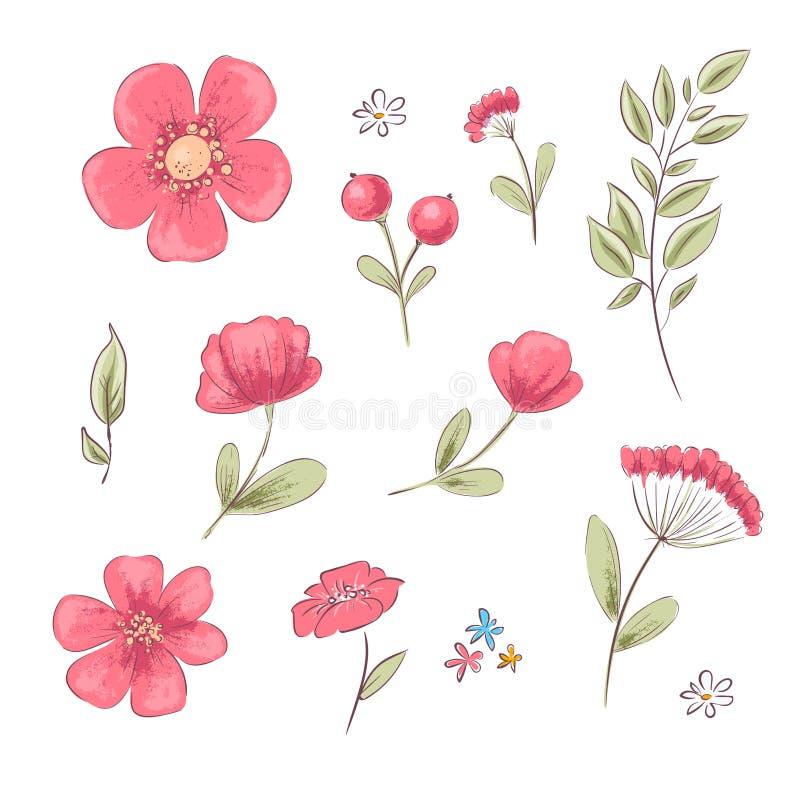 Reeks rode papavers en madeliefjes De tekening van de hand royalty-vrije illustratie