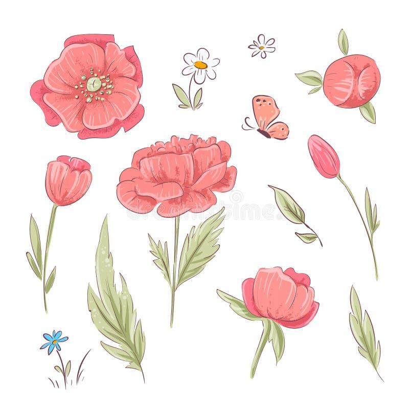 Reeks rode papavers en madeliefjes De tekening van de hand Vector illustratie stock illustratie