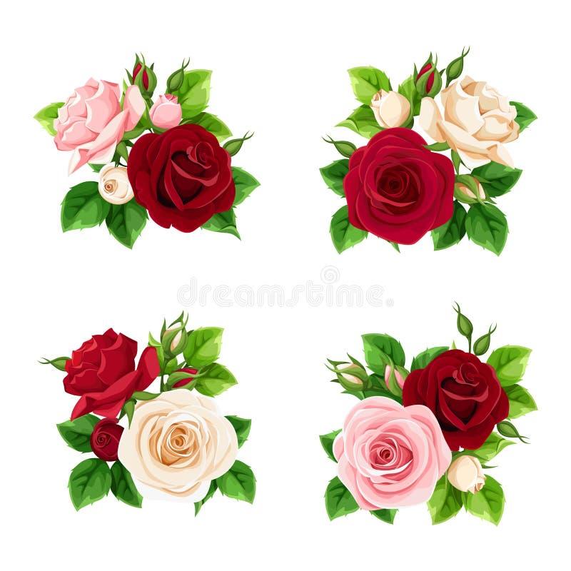 Reeks roze, Bourgondië en witte rozen Vector illustratie vector illustratie