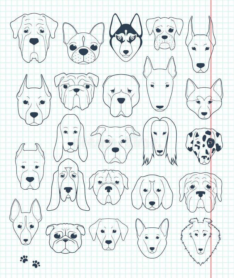 Reeks schetsen 24 met de hand gemaakte honden verschillende rassen Hoofdhond stock illustratie
