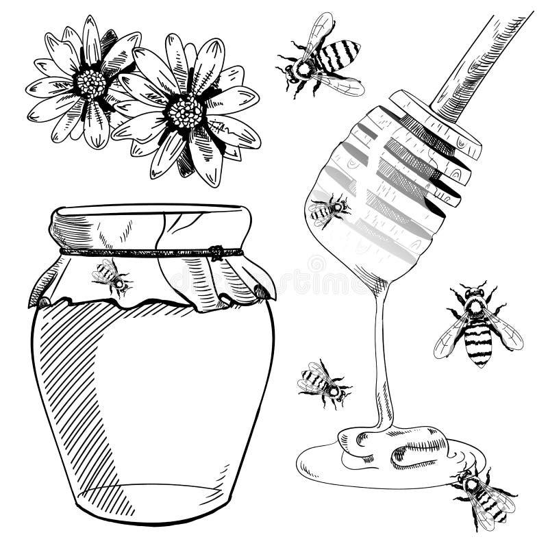 Reeks schetsen Vector illustratie Honing Zwarte tekeningen stock illustratie