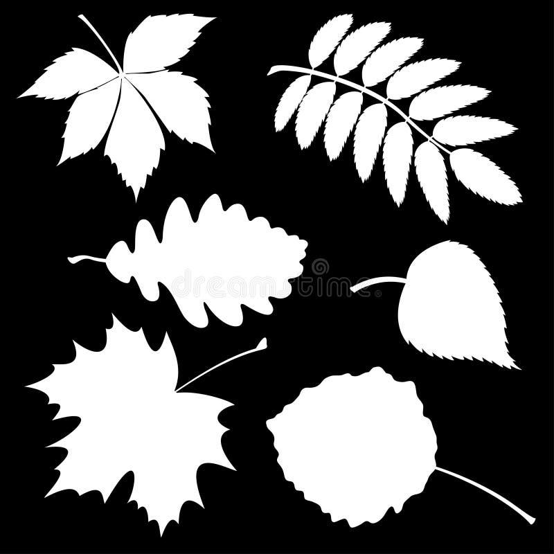 Reeks silhouetbladeren stock illustratie