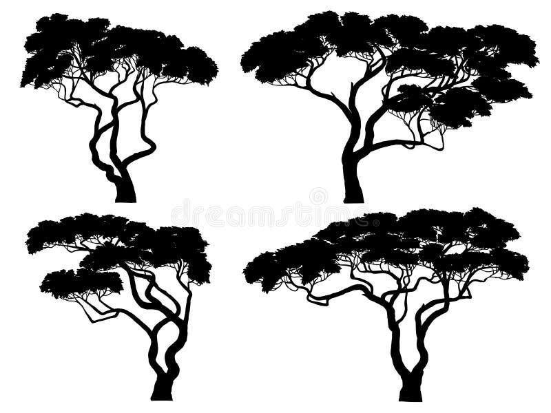 Reeks silhouetten van Afrikaanse acaciabomen stock illustratie