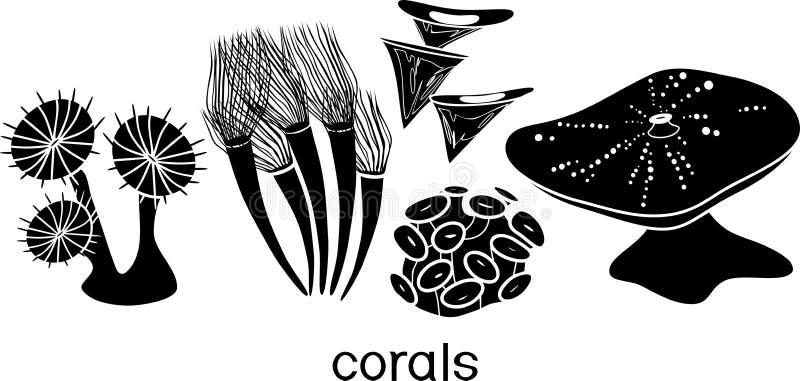 Reeks silhouetten van gestileerde zachte koralen stock illustratie