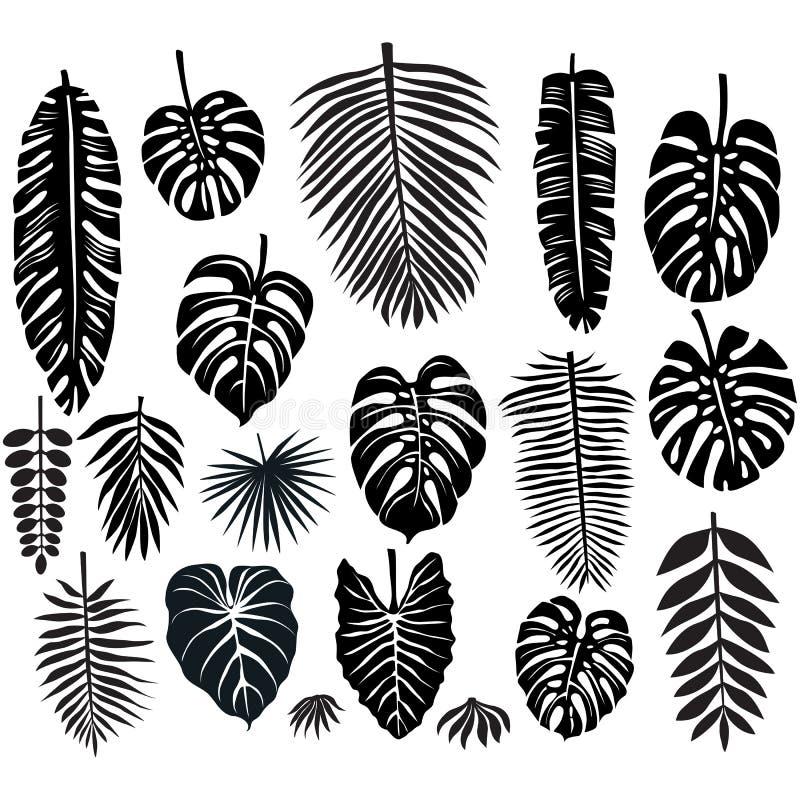 Reeks tropische bladeren vector illustratie