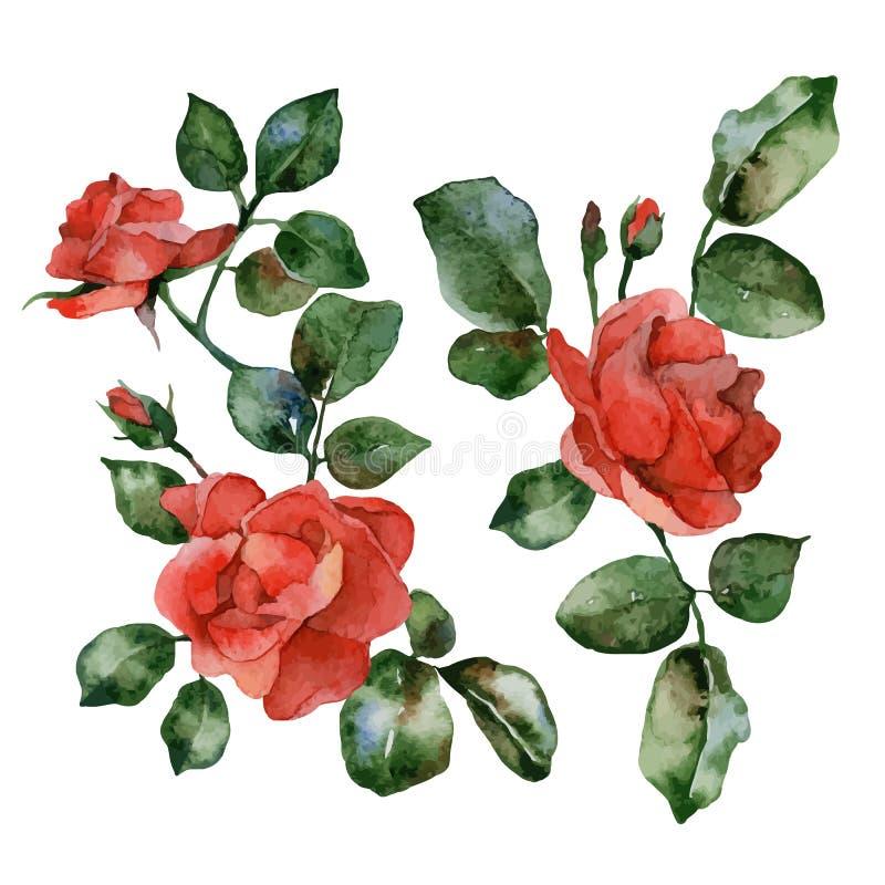 Reeks van bloem royalty-vrije illustratie