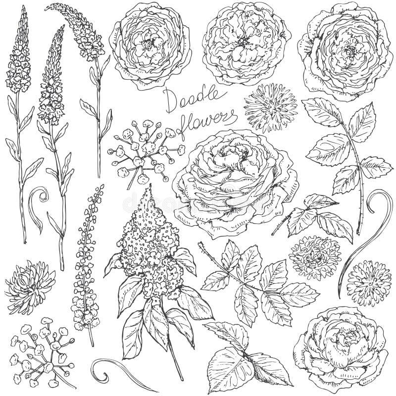Reeks van bloemen en bladerenschets