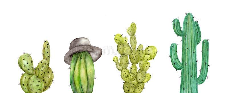 Reeks van cactus op witte achtergrond wordt ge?soleerd die royalty-vrije illustratie