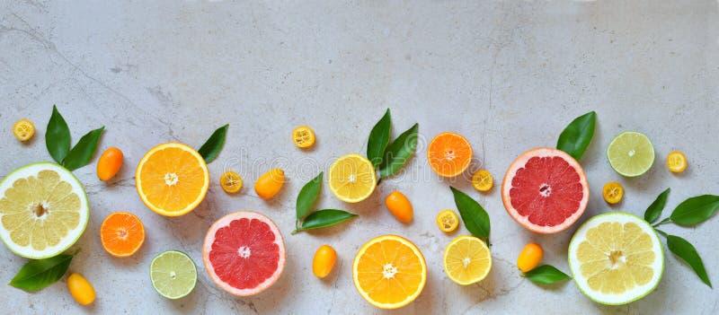 Reeks van citrusvrucht op lichte achtergrond: sinaasappel, mandarin, citroen, grapefruit, kalk, kumquat, mandarijn Verse organisc royalty-vrije stock fotografie
