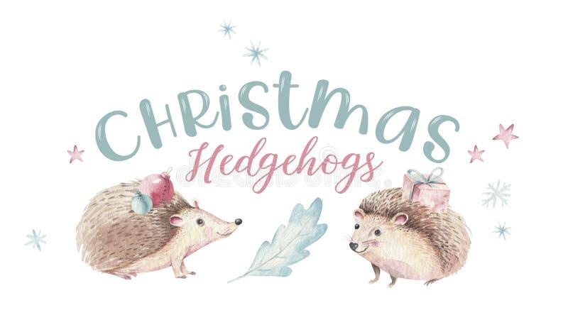 Reeks van van de de baby leuke egel van het Kerstmis het Bos bosbeeldverhaal dierlijke karakter Kerstmisboom van de de winterwasb vector illustratie