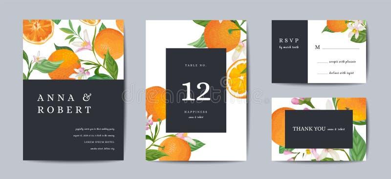 Reeks van de Botanische retro kaart van de huwelijksuitnodiging, wijnoogst sparen de Datum, malplaatjeontwerp van oranje vruchten vector illustratie