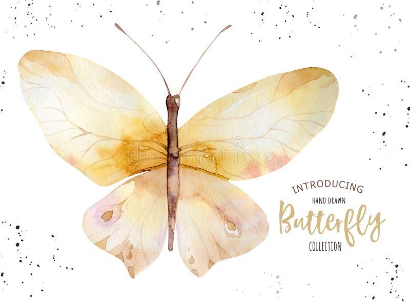 Reeks van de vlinder van waterverfboho Uitstekend de zomer geïsoleerd de lenteart. Watercolourillustratie de kaart van het ontwer vector illustratie