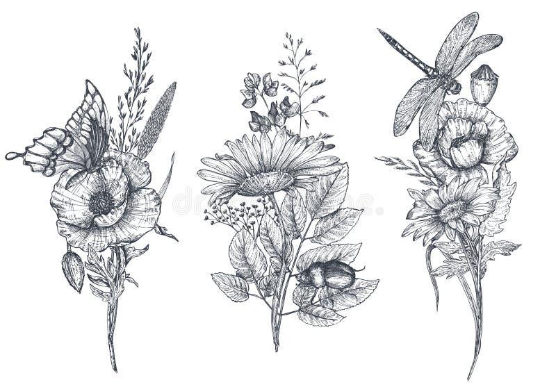 Reeks van drie vector bloemenboeketten met zwart-witte hand getrokken kruiden, wildflowers en insecten royalty-vrije illustratie