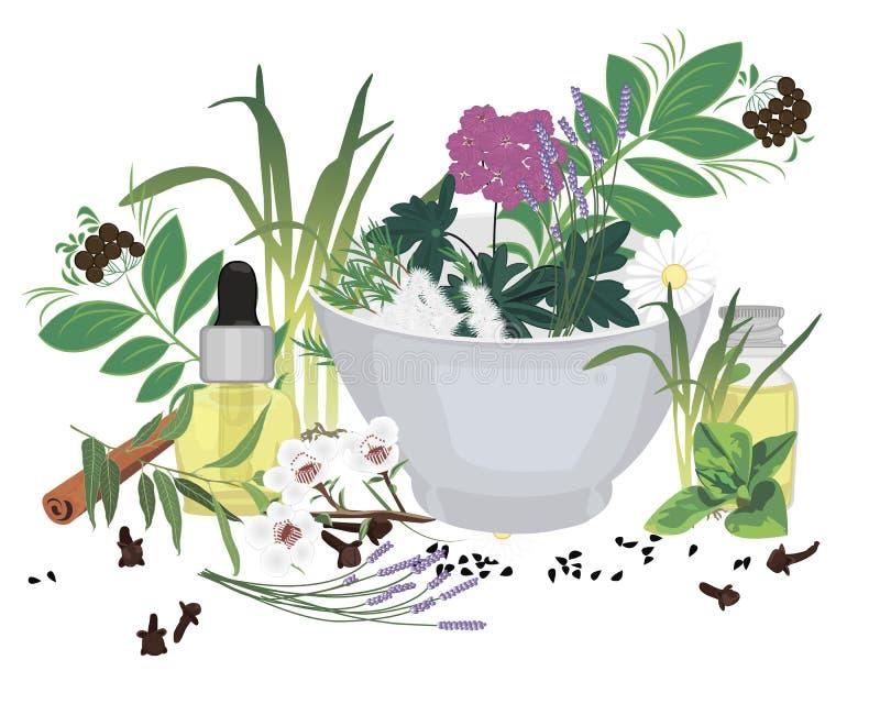 Reeks van etherische oliën vectorillustratie stock illustratie