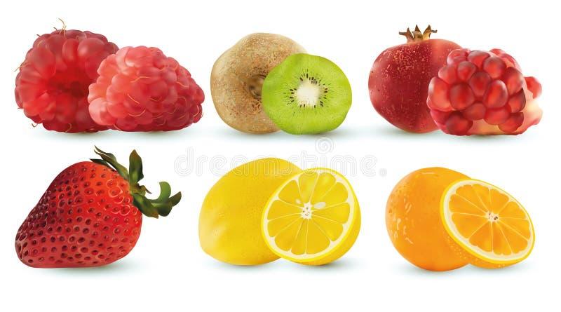 Reeks van framboos, kiwi, pormegranate, aardbei, citroen en sinaasappel Reeks, groep of inzameling van zes fruis Ruw fruit stock illustratie