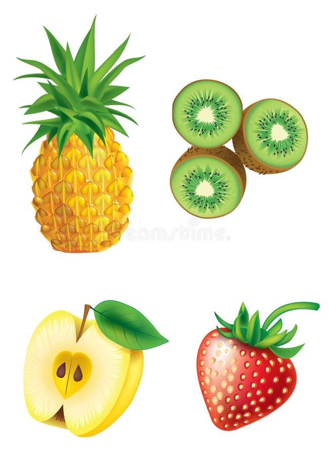 Reeks van fruit royalty-vrije illustratie