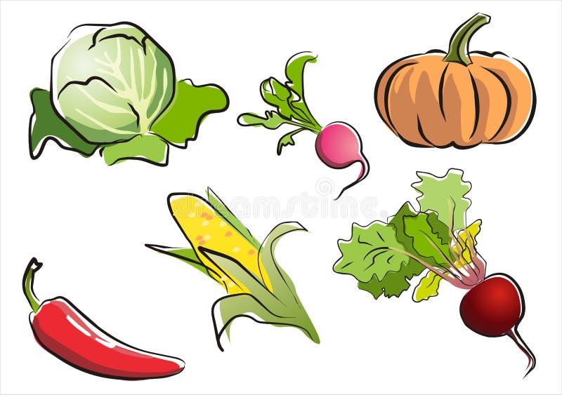 Reeks van geïsoleerd groentendeel 3. vector illustratie