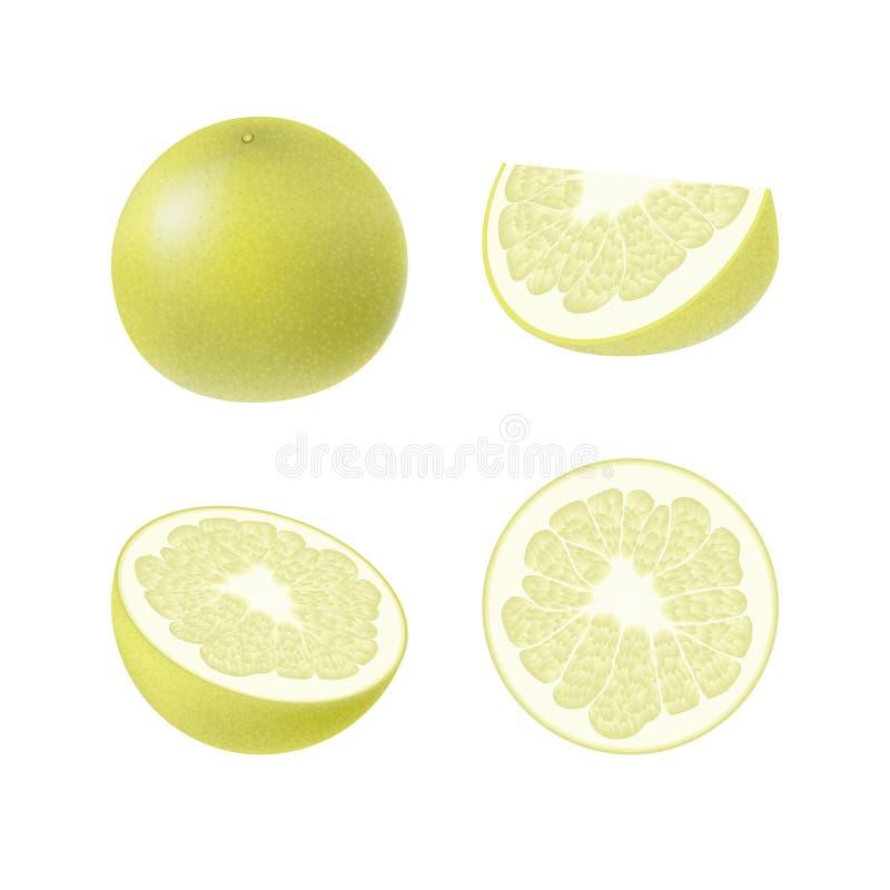 Reeks van geïsoleerde gekleurde gele pompelmoes, de helft, plak, cirkel en geheel sappig fruit op witte achtergrond Realistische  vector illustratie