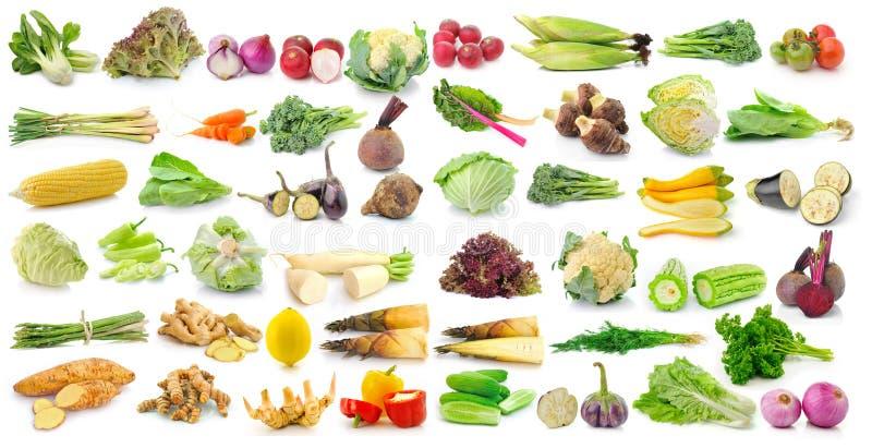 Reeks van groente op witte achtergrond royalty-vrije stock afbeelding