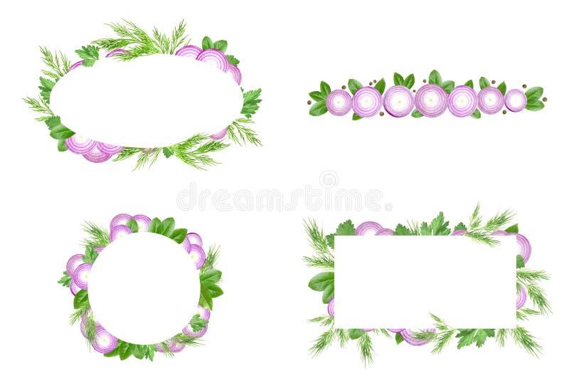 Reeks van groenten en kruidenkadermalplaatje Dit is dossier van EPS10-formaat De gesneden purpere die ui, de dille, de peterselie royalty-vrije illustratie