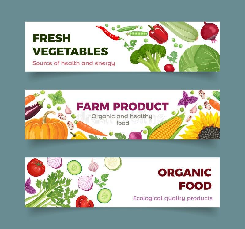Reeks van groentenbanner De standaardgrootte van het Webontwerp vector illustratie