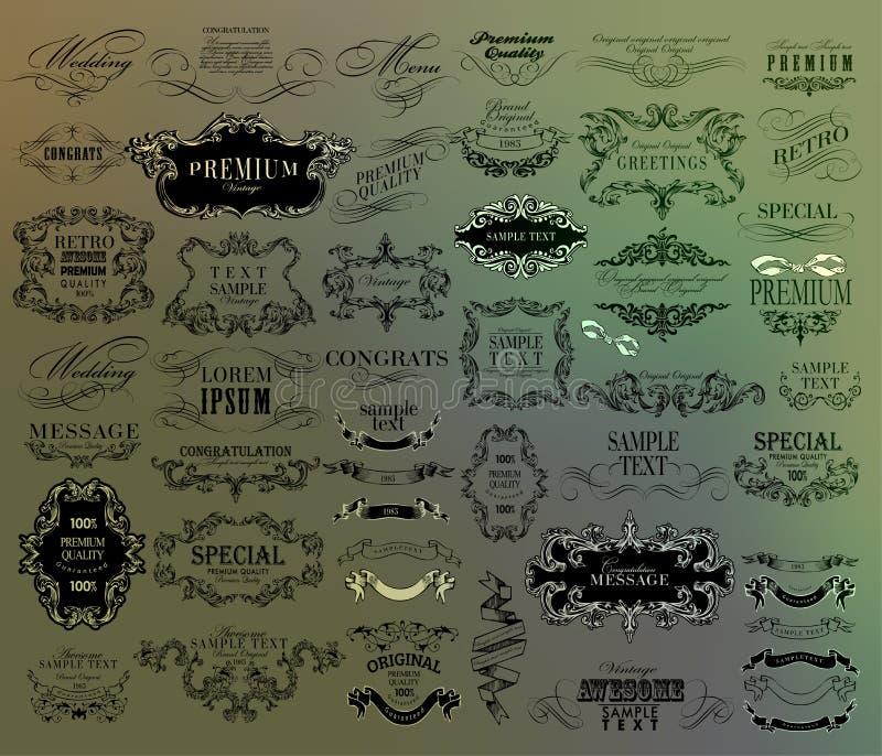 Reeks van hand-trekkende kalligrafische bloemenontwerpelementen royalty-vrije illustratie